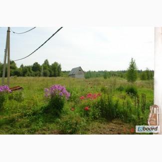 Сдам в аренду или продам сельхозугодья 20ГА в России