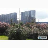 Недвижимость. Апартаменты в Батуми