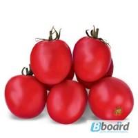 Продам семена Томат Асвон (KS 1140) F1