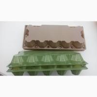 Упаковка для куриных яиц (ПЕТФ) 10 гнезд коричневая, зеленая
