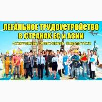 Легальное трудоустройство в cтpaнax Европы и Азии
