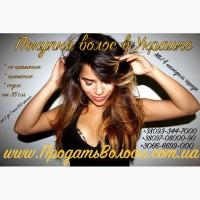 Продать волосы в Мариуполе дорого Изготовление париков
