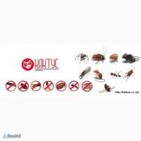 100% избавим от клопов, клещей, блох, комаров, тараканов, муравьев, ос, шершней