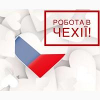 Сортування одягу / Робота для жінок / Чехія Потрібні жінки з візами