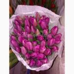 Тюльпаны к 8 марта из Голландии/тюльпани до 8 березня