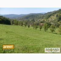 Продам земельну ділянку 45сот. в Карпатах