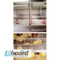 Комплекты оборудования для содержания птицы