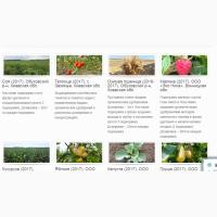 Продам органические удобрения оптом