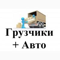 Разборка и сборка мебели, витрин и прочего
