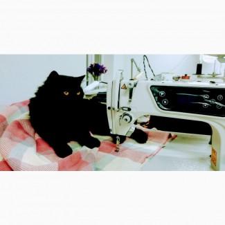 Авторська швейна студія LaTeS по виготовленню жіночого одягу