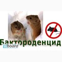 Яд от крыс и мышейБактороденцид