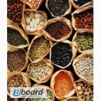 Оптовые покупки бобовых культур