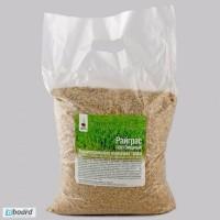 Продам семена Райграса (многолетний, многоукосный)