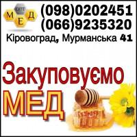 Закупаем мед. Кировоградская область
