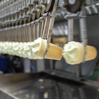 Работа для мужчин и женщин на фабрике мороженого в Чехии