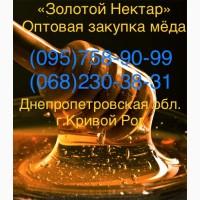 Золотой Нектар Оптовая закупка меда (Кривой Рог)