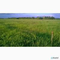 Продам 2 земельных участка на территории Безлюдовского посел. Совета