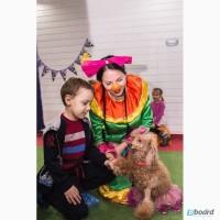 Организация детских праздников - лучшие аниматоры для детей Киев