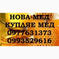 Закупка мёда с РАПСА и ПОДСОЛНУХА. Забираем своим транспортом