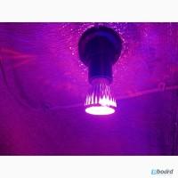Фитолампа 10 Ватт (светодиодная лампа для растений)
