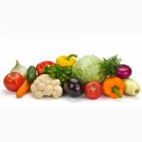 Закупка овощей с вашей доставкой