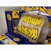 Продам бананы сорта Эквадор