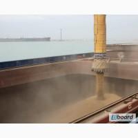 Milling wheat 3 grade FOB Odessa