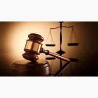 Адвокат по гражданским делам (видео)