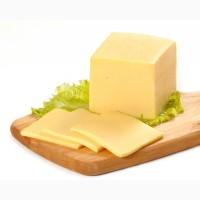 Продам сырный продукт Украина