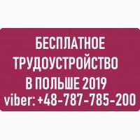 Бесплатные вакансии для мужчин в Польше. WorkBalance
