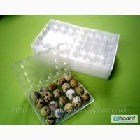 Упаковка для перепелиных яиц, блистерная на 20 яиц