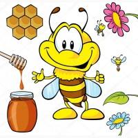 Закуповую мед по Дніпропетровській обл і сусіднім обл