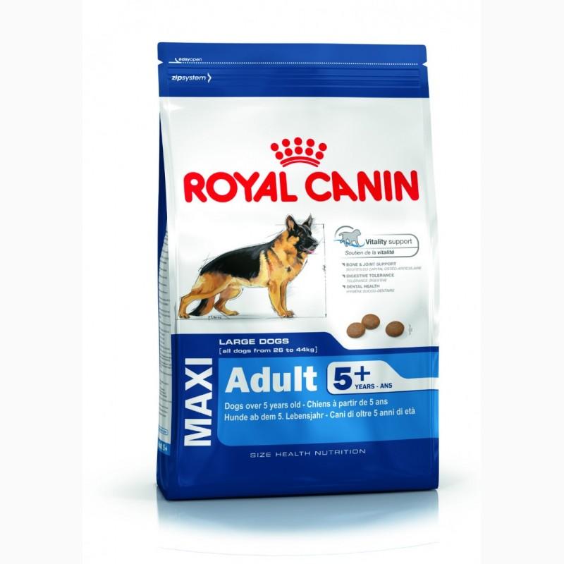 Корм renal royal canin