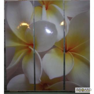 Обработка стекла и зеркала. Эксклюзив-фотоМОЛЕКУЛЯРНЫ Й полноцвет!