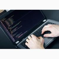 Веб-программист Wordpress (удаленная работа)
