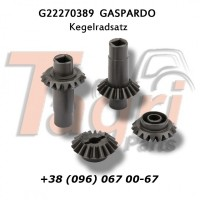 G22270389 Конічна пара шестерень 2+2 Gaspardo
