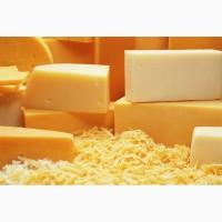 Продажа твёрдого сыра оптом Украина