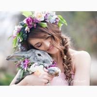 Кролики для фотосессий