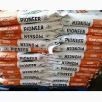Распродажа остатков семян подсолнечника, кукурузы