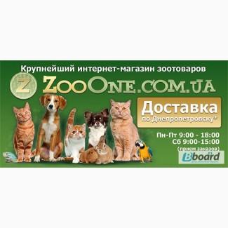 Новый сайт зоотоваров