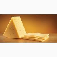 Продам твёрдый сыр от производителя