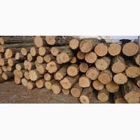 Продам дрова колоті сухі Луцьк, дрова купити, дрова ціна