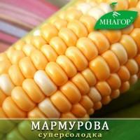 Солодка кукурудза середньостигла Мармурова F1, биколор, 1000 нас. 24% цукрів