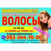 Куплю волосы в Одессе дорого