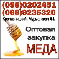 Закупаємо мед оптом. Драбів, Чорнобай, Золотоноша