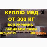 Закупаем мёд оптом в ДНЕПРОПЕТРОВСКОЙ И ПОЛТАВСКОЙ обл. Забираем своим транспортом