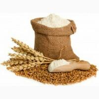 Продам пшеничне борошно, 1/г та в/г