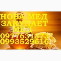Оптовая закупка мёда. ДНЕПРОПЕТРОВСКАЯ и соседние обл от 500 кг