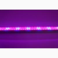 Светодиодный светильник T8-2835-0.6FS R:B=4:2 8W ( 4 красных 2 синих ФИТО свет ) растений