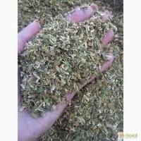 Табак Самосад